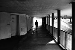 towards the light (gato-gato-gato) Tags: street leica bw white black film blanco monochrome analog 35mm person schweiz switzerland flickr noir suisse strasse zurich negro streetphotography pedestrian rangefinder human streetphoto mp monochrom zrich svizzera weiss zuerich blanc ilford m6 manualfocus analogphotography schwarz ch onthestreets passant mensch sviss leicam6 zwitserland isvire zurigo filmphotography streetphotographer homedeveloped fussgnger manualmode zueri leicamp strase filmisnotdead streetpic messsucher manuellerfokus gatogatogato fusgnger leicasummiluxm35mmf14 mechanicalperfection gatogatogatoch wwwgatogatogatoch streettogs believeinfilm tobiasgaulkech