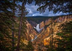 Artist Point Afternoon (Darren White Photography) Tags: waterfall yellowstonenationalpark yellowstone wyoming nationalparks lowerfalls artistpoint darrenwhite darrenwhitephotography