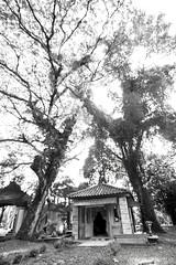 Palembang (19) (M Arief Wibowo) Tags: museum river temple bukit palembang musi candi tinggi astano karanganyar kedaton sriwijaya gedong srivijaya siguntang gumpung
