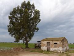 Delta (cincde82012) Tags: river delta catalonia riu ebre