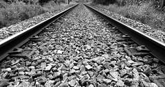 rail (verridrio) Tags: black white mono monochrome monocromtico nero negro preto branco noir blanc bianco blanco sony rail oeste west linha ramal verride paralelas carris chemindufer caminhodeferro ferrovia wb bw eisenbahn railroad  demiryolu    stone
