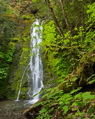Madison Creek Falls (saganorth2000) Tags: forest waterfall washington nationalpark logs mossy olympicnp madisoncreekfalls