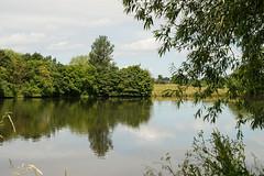 Weaver Lake, uk (newbiephoto92) Tags: uk trees reflection tree water nikon cheshire nantwich d3200