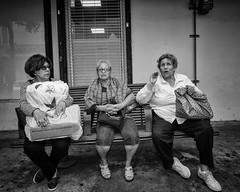 Ageless (35mmStreets.com) Tags: street city portrait urban bw 35mm photography blackwhite nikon df little florida miami sony havana kittens d750 nik southbeach dsc sobe lightroom washingtonstreet d600 collinsave d4s silverefex 35mmstreets rx1rm2