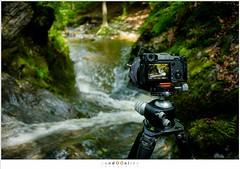 Fotograferen met de X-Pro 2 (nandOOnline) Tags: beek ardennen belgi fujifilm luik x70 rivier ninglinspo remouchamps bergrivier stroomversnelling belgi bergbeek