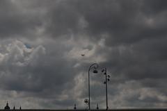 D80_8163 (Henk Stroomenbergh) Tags: dc3 c47 amsterdam phpba dday marketgarden skytrain eighth air force 8 af 8af 1944 market garden september 17th june 6th dutch association dakota