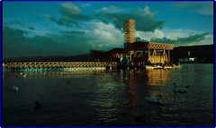 Evening on Zurich lake: Explored 20.06.2016 #227-Thanks (Ioan BACIVAROV Photography+4millions visits-Thanks) Tags: lake bird beautiful reflections wonderful switzerland evening interesting suisse zurich helvetia photostream swain wonderfulphoto ioanbacivarov bacivarov