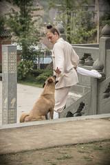 China Wudang Kungfu Academy (jiayo) Tags: china kungfu wushu hubei wudang