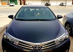 Toyota - Corolla - 2014  (saudi-top-cars) Tags: