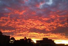 Winter Sunset (SteveSeven77) Tags: australia nsw sydney sunset sky winter weather