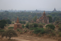 2016myanmar_0372 (ppana) Tags: bagan alodawpyay pagoda ananda temple bupaya dhammayangyi dhammayazika gawdawpalin gubyaukgyi myinkaba wetkyiin htilominlo lawkananda lokatheikpan lemyethna mahabodhi manuha mingalazedi minochantha stupas myodaung monastery nagayon payathonzu pitakataik seinnyet nyima pagaoda ama shwegugyi shwesandaw shwezigon sulamani thatbyinnyu thandawgya buddha image tuywindaung upali ordination hall