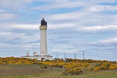 image (John's Wildworld) Tags: lighthouses moray firth scotland