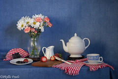 Still life in red, white, and blue. (Phyllis Freels) Tags: wood flowers blue red stilllife white glass fruit vintage silver strawberry availablelight knife indoor mums blueberry daisy vase pottery teapot denim teacup tabletop checks stilllifephotoart phyllisfreels