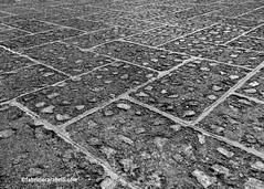 STONE FLOOR-FLICKR (fabriziocarabelli_photography) Tags: stone floor flick 2k16 fabriziocarabelli