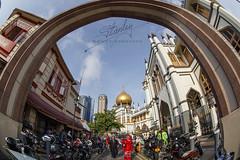Sultan Mosque, Singapore (REVIT PHOTO'S) Tags: travel singapore muslim islam praying superior celebration getty mk2 hariraya aidilfitri arabst sultanmosque 1dx selamathariraya exploresingapore singaporetourismboard canonimaging canon1dxmk2