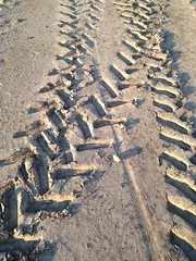 intersecting tracks (ladybugdiscovery) Tags: tractor field bicycle sand earth tracks dirt intersecting