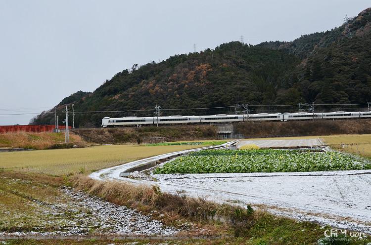 鵜之川遊步道13.jpg