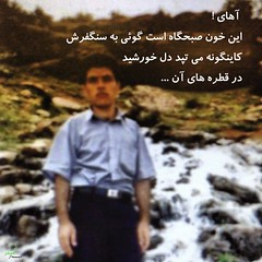 !                 ... (JoindHands) Tags: freedom iran      proxy arman  sabz                kalame        jonbesh