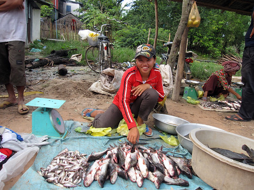 A fish seller girl in local fish market, Cambodia. Photo by Jharendu Pant, 2009.
