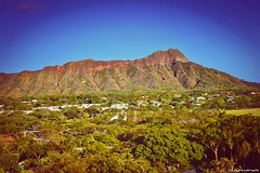 Diamond Head Crater { Honolulu, HI } (crashclover) Tags: trees houses hawaii waikiki oahu diamondhead honolulu waikikibeach diamondheadcrater lawrenmoore carouselcuesyahoocom hellolawrenmoorecom lawrenmoorecom