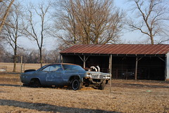 pasture(ized) (David Sebben) Tags: chevrolet abandoned hardtop rural illinois 1966 mercer pasture impala sporty twodoor