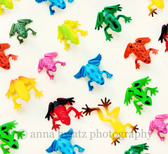 Ribbit (Anna Hwatz Photography) Tags: animals kids fun toys bright plastic frogs colourful amphibians brightcolours odc2