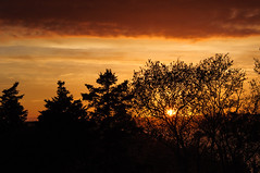Bell Island Sunset (bonavistask8er) Tags: ocean sunset sky silhouette newfoundland island evening nikon bell d90 18300