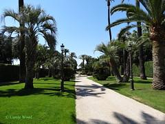 Quirinale (Palazzo del) - Giardini (Fontaines de Rome) Tags: roma palazzo quirinale giardini palazzodelquirinale