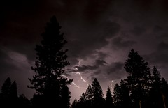 Lightning and Trees 1 (TRECpro) Tags: storm clouds timelapse lightning