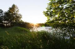 Dernire lueur (Sebastien Morin) Tags: city bridge blue sunset sky sun tree green nature grass sunshine eau escape angle montral wide ile sunny bleu ciel qubec pont arbre ville herbe sunstar gazon sigma1020 ileperry
