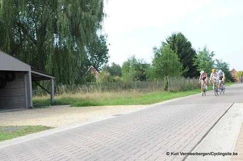 Scherpenheuvel (442)