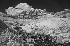 Looking Up At Mt. Rainier In Infrared Monochrome (aeschylus18917) Tags: mountain nature clouds america landscape ir volcano nikon scenery paradise d70 surreal mountrainiernationalpark cascades glaciers infrared tacoma washingtonstate mtrainier 1870mm stratovolcano mtrainiernationalpark 赤外線 ダニエル danielruyle aeschylus18917 danruyle druyle ルール ダニエルルール
