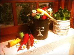 PiMeNtA NoS OLhOs DoS OuTrOs  ReFrEsCo! (DoNa BoRbOlEtA. pAtCh) Tags: flores flower handmade pimentas fuxicos donaborboletapatchwork denyfonseca