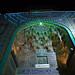 0809 Shiraz Shah-e-Cheragh Mausoleum - 60