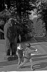 Big Foot Groaned. (Glowingman638) Tags: ocean california camping boy fern tree beach girl fog oregon forest utah pacific nevada tall redwoods douglas mcdonald f15 eagleshadows