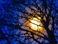 P1020449trav (pascalpiette) Tags: leica city red cloud sol clouds sunrise lumix soleil belgium belgique alba cities down du jour panasonic amanecer aurora wee hours raymond pascal towns huy octave heure lever bleue aurore aube piette dmcfz72 18012014
