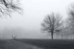 Gloomy (Thomas TRENZ) Tags: white black fog way nikon nebel meadow wiese down 1200 weiss schwarz weg f40 iso250 nikon35mm18g nikond5100 trb