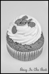 Chocolate Cupcake (Daisy Sparkles old account) Tags: blackandwhite stilllife food monochrome naughty dessert mono baking sweet chocolate sugar cupcake icing highkey iced brownies nom naughtybutnice sweettreat dessertheaven silverefexpro