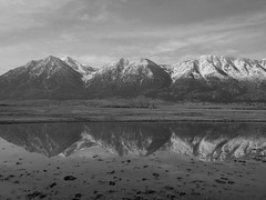 Carson Range Reflection (claypeoples) Tags: california blackandwhite mountain lake snow mountains reflection pine america landscape unitedstates nevada clarity sierranevada alpinelake highsierra mountainscenery {vision}:{sky}=0829 {vision}:{ocean}=0503 {vision}:{outdoor}=0806 {vision}:{clouds}=0576 {vision}:{mountain}=0756