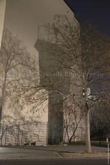 The shadow of a watchtower (Stationary Nomads) Tags: light shadow west berlin 1969 germany dark deutschland east berlinwall potsdamerplatz mitte nomansland gdr 1961 coldwar watchtower deathstrip 13august1961 amenaamer