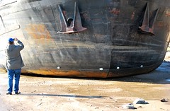 på tomgång (Scilla sinensis) Tags: beach tom river photographer empty hamburg vessel jade stranded elbe havarie fotosondag fs140309
