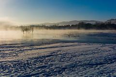 (snow and fog) (zhouyousifang) Tags: china morning winter snow bird fog  cranes  yunnan  everglade 2014      blackneckedcrane