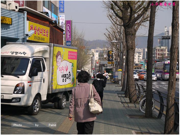 首爾鞍山公園櫻花道안산공원벚꽃길 (35).JPG