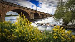 Un Air de Loire (Njones03) Tags: france loire fleuve nevers autofocus nièvre