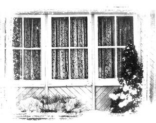 14/ ~windows & doors~
