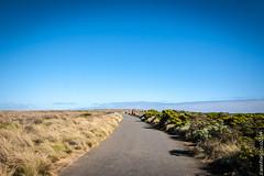Great Ocean Road (annfran) Tags: travel australia roadtrip victoria greatoceanroad annfran annfrancisco