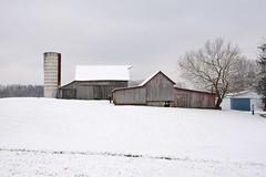 Snowy barn (Sarah Hina) Tags: barn snowy silo