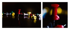 24 365 (ROS_photofw) Tags: color nikon diptych 365 nikon50mm 365project 365challenge freelens 365journey freelensing freelensed