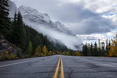 Icefields Parkway (flippers) Tags: road trees cloud mountain snow canada tree fog clouds haze snowcapped alberta valley snowcap lowlying waterfowllakes