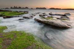 (rainbow wasabi) Tags: park sunset seascape seaweed beach nature rock oregon landscape coast rocks state pacific northwest seal